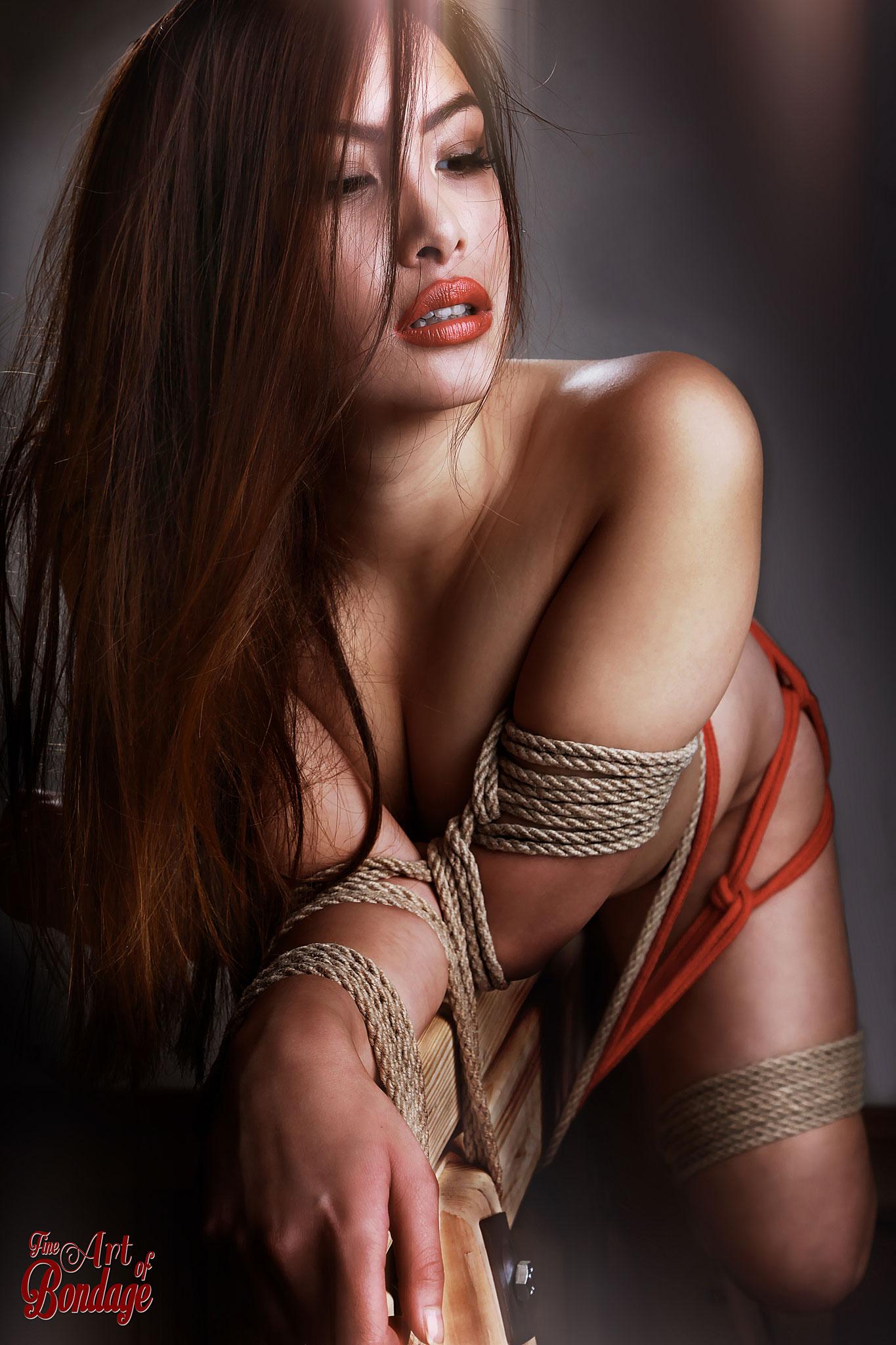 adult erotic bondage galleries